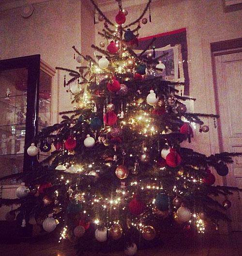 В этом году Тине принесли настоящую живую елку, Фото: СОЦСЕТИ