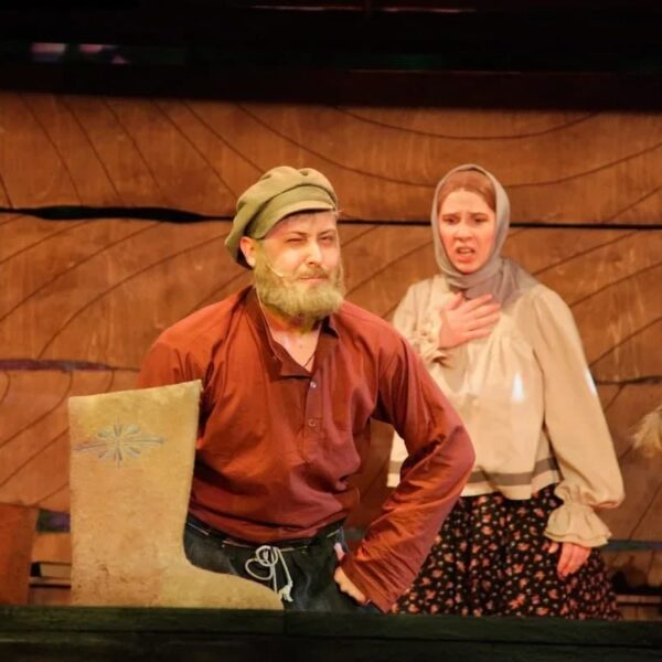 Спектакль «Слон» в Губернском театре