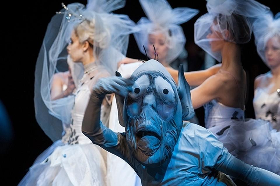 Фото: www.danceopen.com