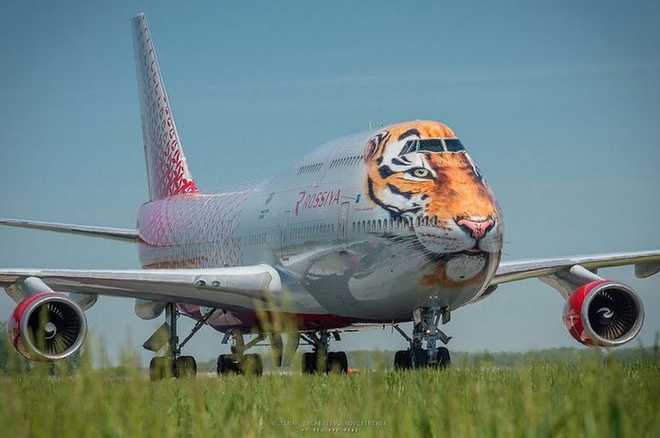 турция поплатится за наш сбитый самолет