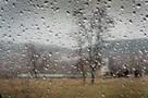 Под Воронежем ураган снес крыши домов, заборы и деревья