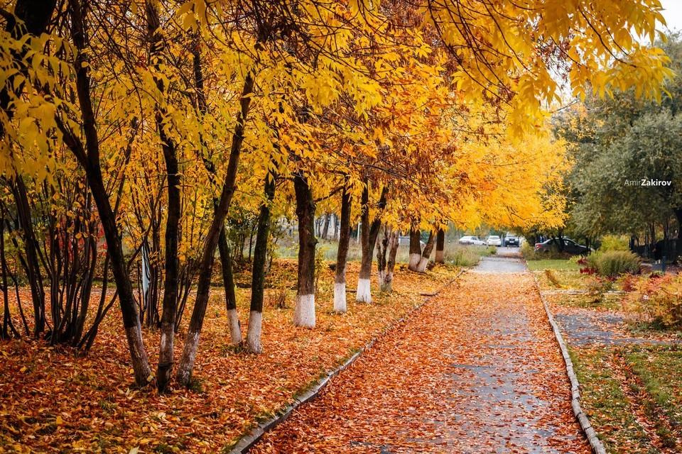 Осень-2017 в Ижевске: 20 атмосферных фото Фото: Амир Закиров