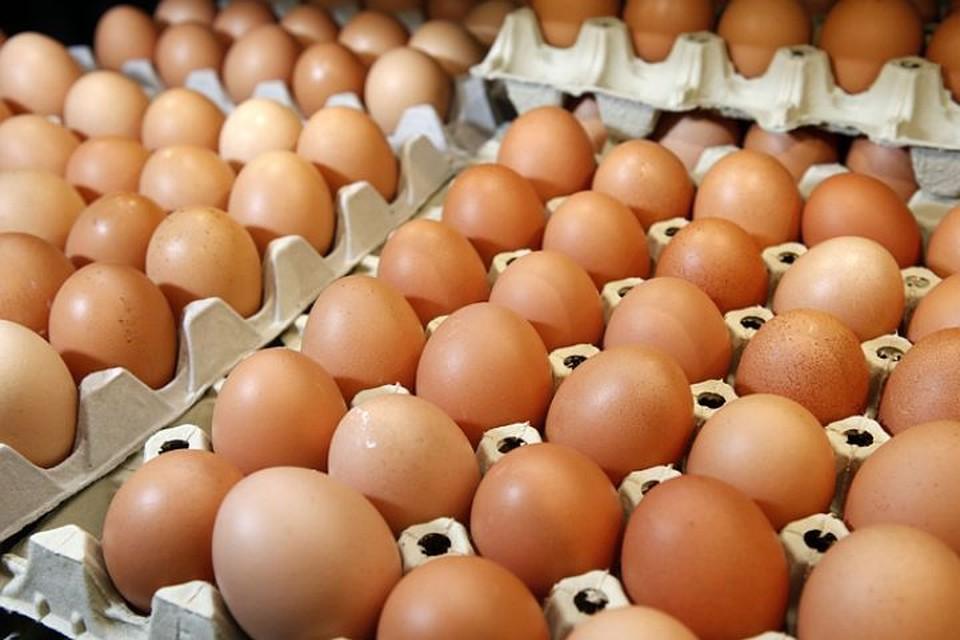 """Полторы тысячи яиц тухнут в полицейском участке. Фото: Архив """"КП"""""""