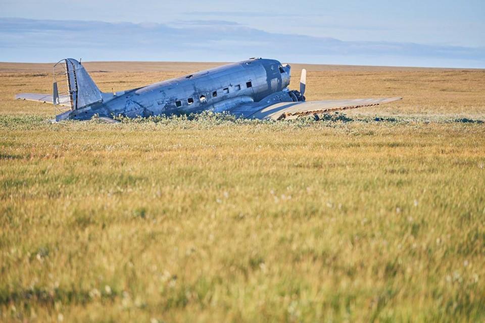 Самолет Douglas C-47 в тундре, 2007 год. Фото: Русское географическое общество