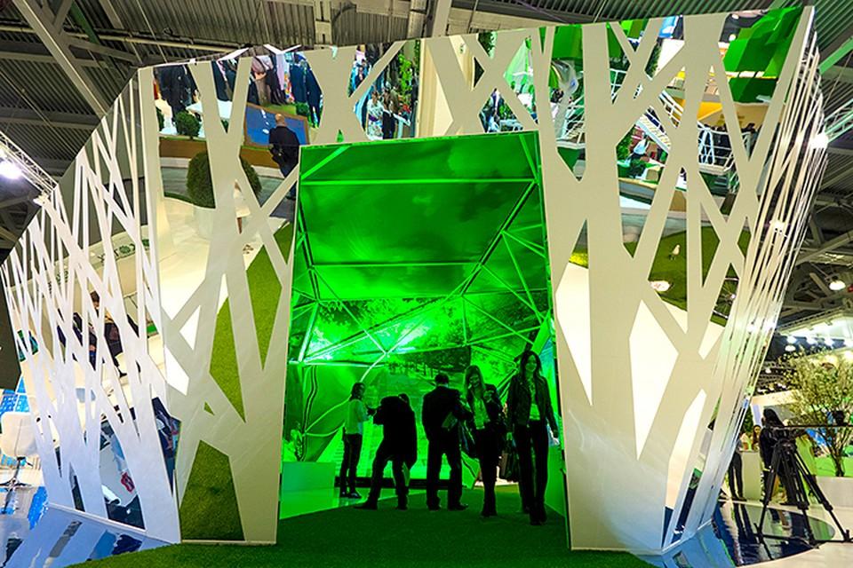 Сама выставка вместе с V Всероссийским съездом по охране окружающей среды официально начнет работу 12 декабря. Фото: Руслан Шамуков/ТАСС