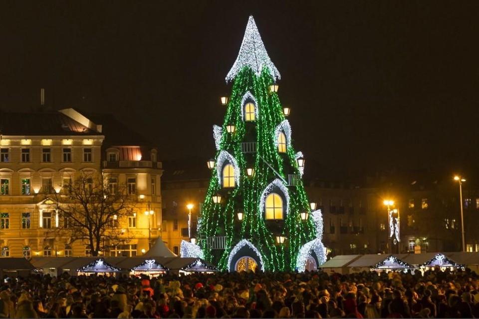 Главную елку Вильнюса в 2016 году внесли в список самых оригинальных рождественских елок Европы. Фото: vnews.agency