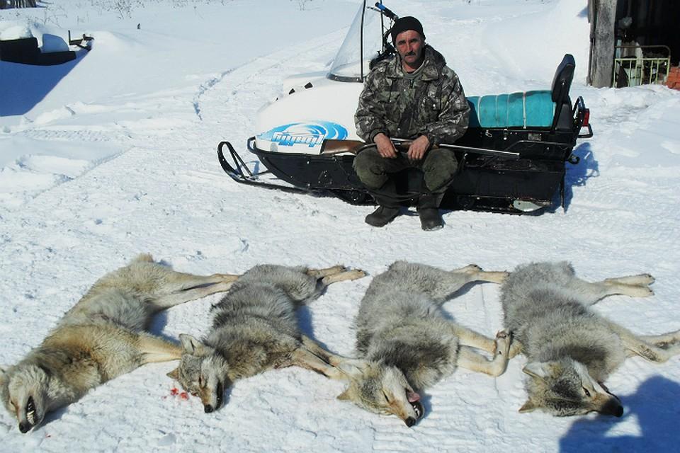 В каких районах башкирии разрешена охота без лицензии 2019 году