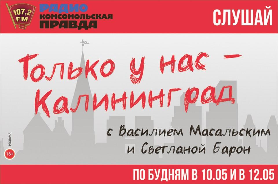 Как работает первое в Калининграде котокафе