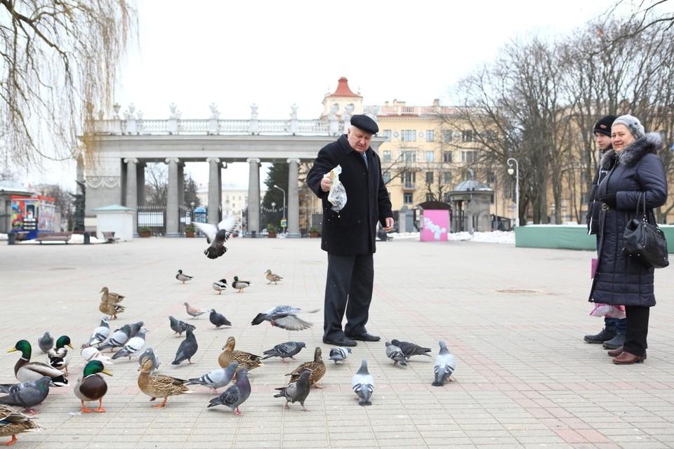 3600 белорусов попали в пенсионную ловушку