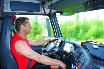 Рабочее досье: водитель