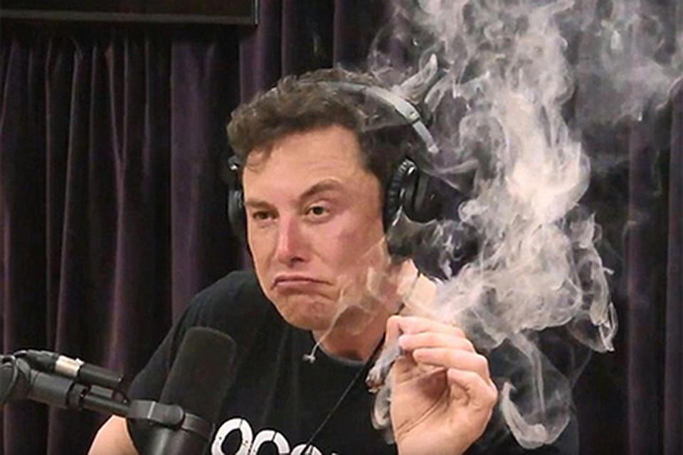 Маск отметил, что редко курит траву, поскольку она не оказывает на него эффекта