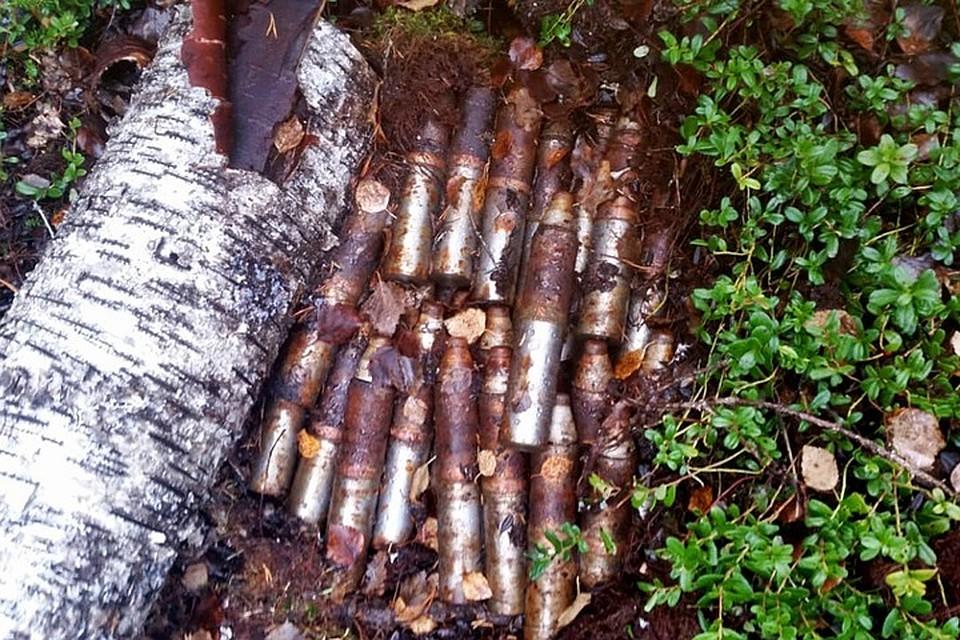 Такой вот смертоносный арсенал таился в Мурманской области примерно 75 лет. Порох и взрыватели, что самое жуткое, сохранились в актуальном состоянии. Фото: пресс-служба ФСБ России по Мурманской области