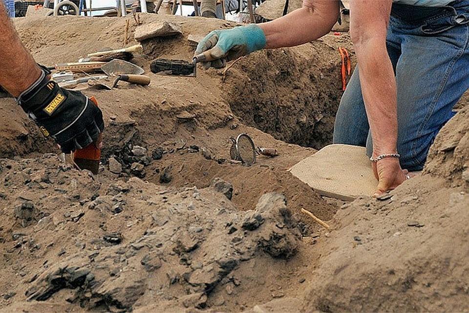Во время раскопок в Египте археологи нашли редкие мумии
