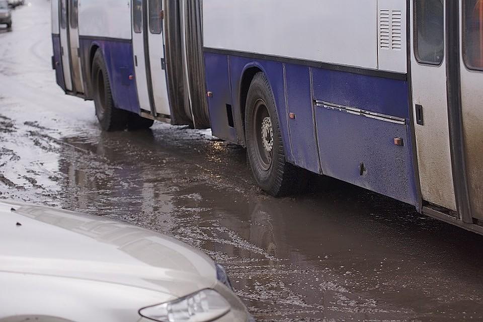 Воронежцы, которые передвигаются на инвалидных колясках, массово вышли на остановки общественного транспорта, чтобы оценить этот самый транспорт на удобство