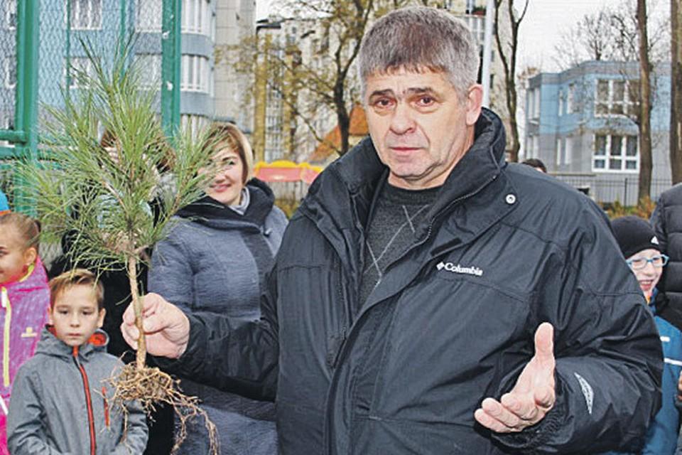 Цель активиста Санжарова - в каждом поселке самого западного региона России заложить кедровые рощи. Его цель номер два - создать «Калининградский кедроград». Ну а цель номер три - распространить кедры повсюду.
