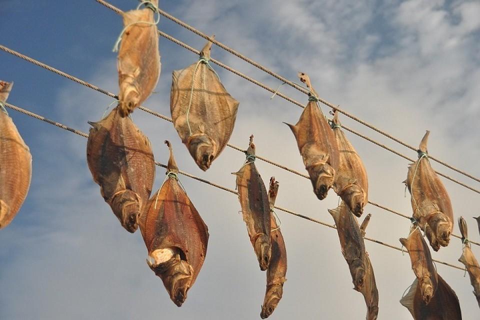 В Приморье цены снизились на камбалу, сельдь, навагу, горбушу, минтай и кальмар. Фото: pixabay.com