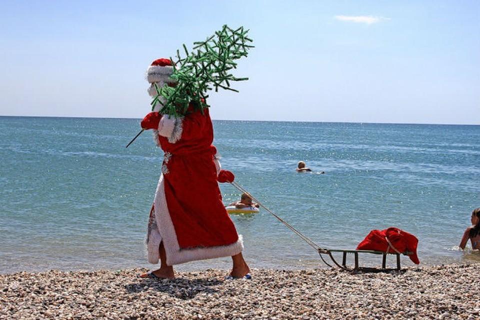 В Крыму на новогодние праздники ждут больше 200 тысяч отдыхающих.