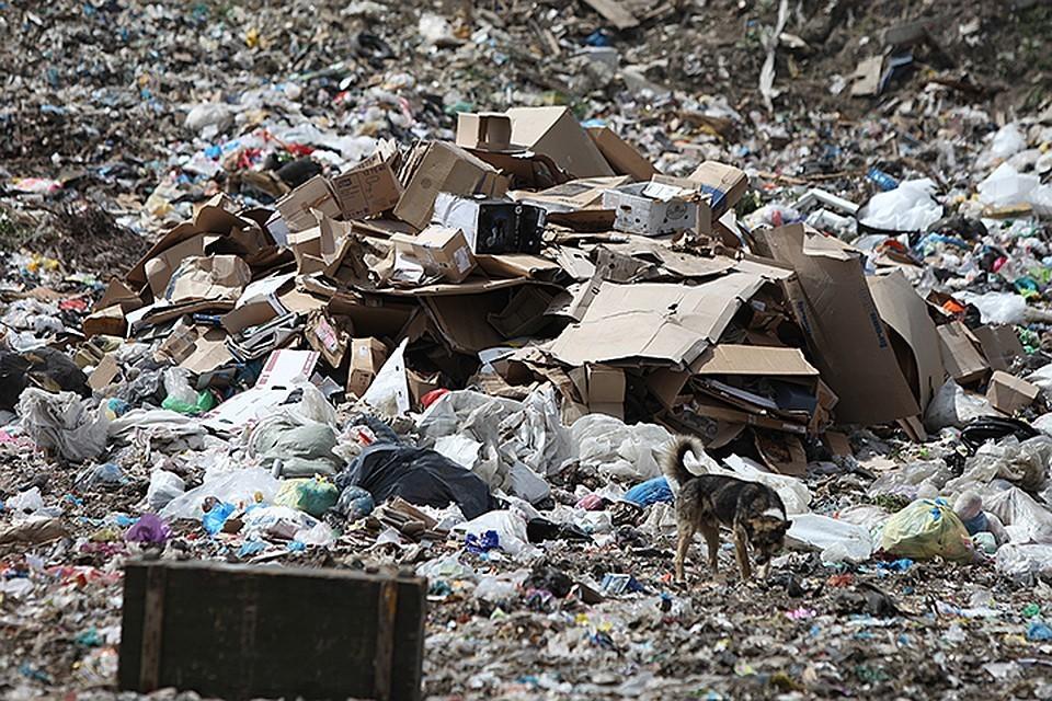 Опасные отходы будут утилизировать на специальных предприятиях