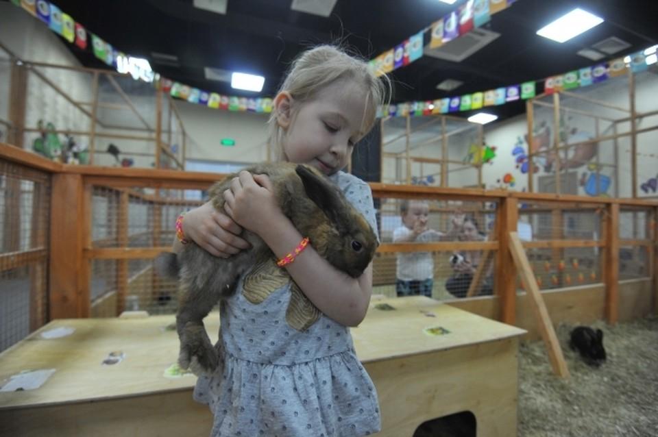 В контактных зоопарках отметили, что они работают в привычном режиме и изменения их не коснулись.