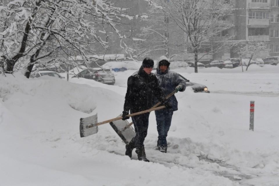 Синоптики прогнозируют мощный снегопад в Москве, местами метель