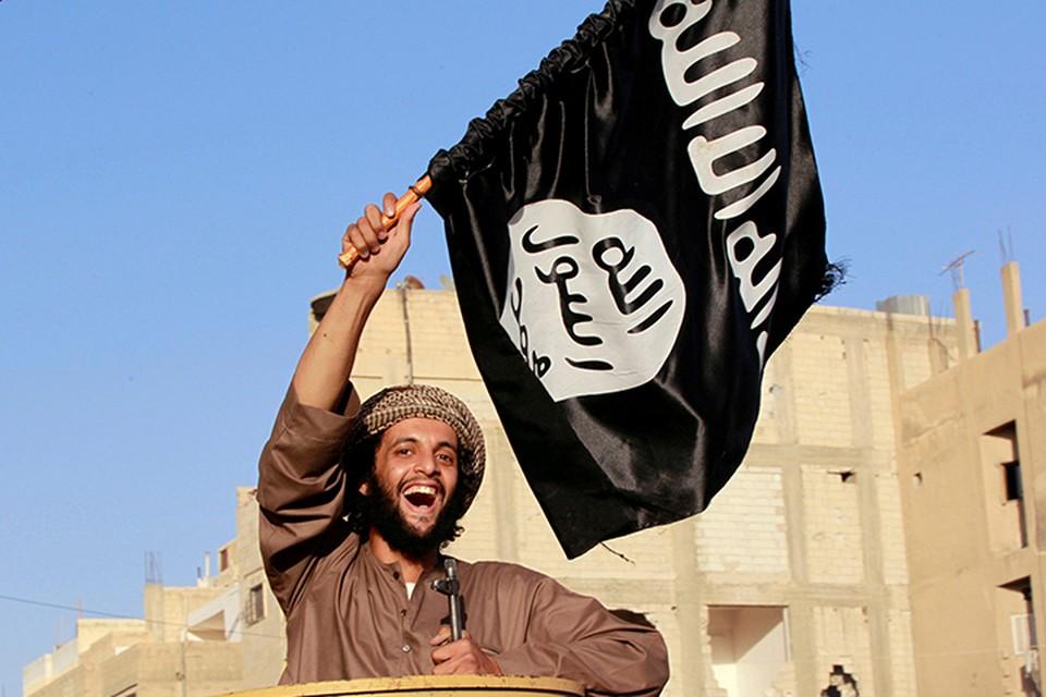 Идет зачистка последнего оплота «Исламского государства» (Террористическая организация, запрещенная в РФ) в Сирии