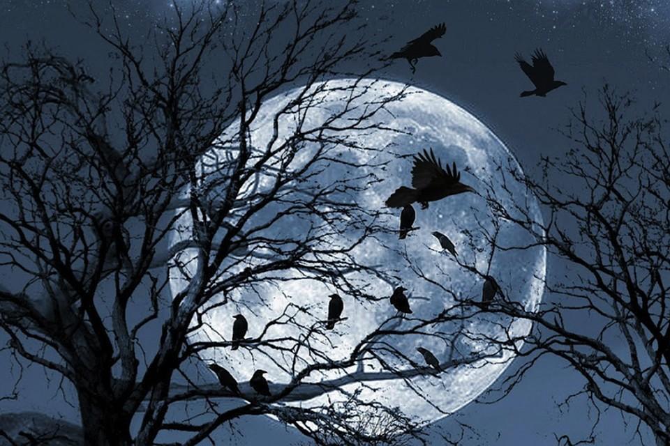 318b001d0 «Воронье полнолуние» 21 марта 2019 года: Россияне увидят самую большую Луну  за месяц