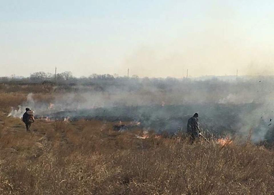 Крупный пал в Муравьевском заказнике тушили «всем миром». Фото: instagram.com/ohotaamur
