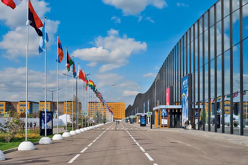 Большая часть деловых мероприятий V Международного арктического форума «Арктика – территория диалога» пройдет 9–10 апреля в Конгрессно-выставочном центре «Экспофорум» в Санкт-Петербурге