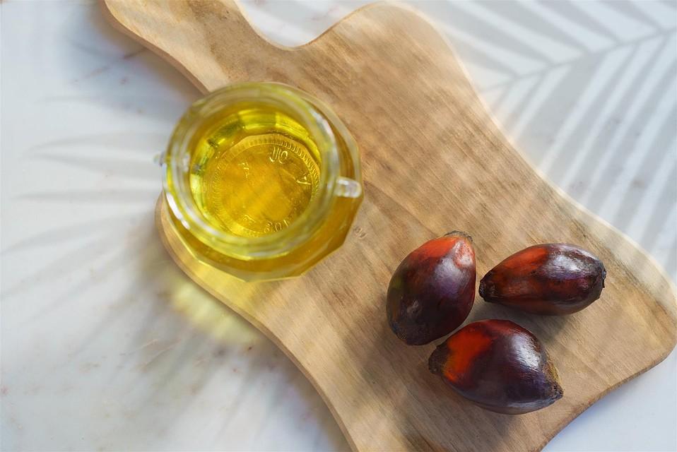 Пальмовое масло таможенная экспертиза