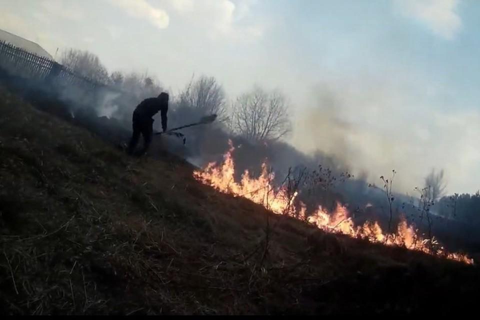 Против огня с лапником и лопатой: Кузбассовцы спасли деревню от лесного пожара. ФОТО: кадр видео Романа Жатова.