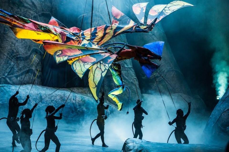 Шоу, которое готовили пять лет, покажут в России. Фото: Пресс-служба Cirque du Soleil