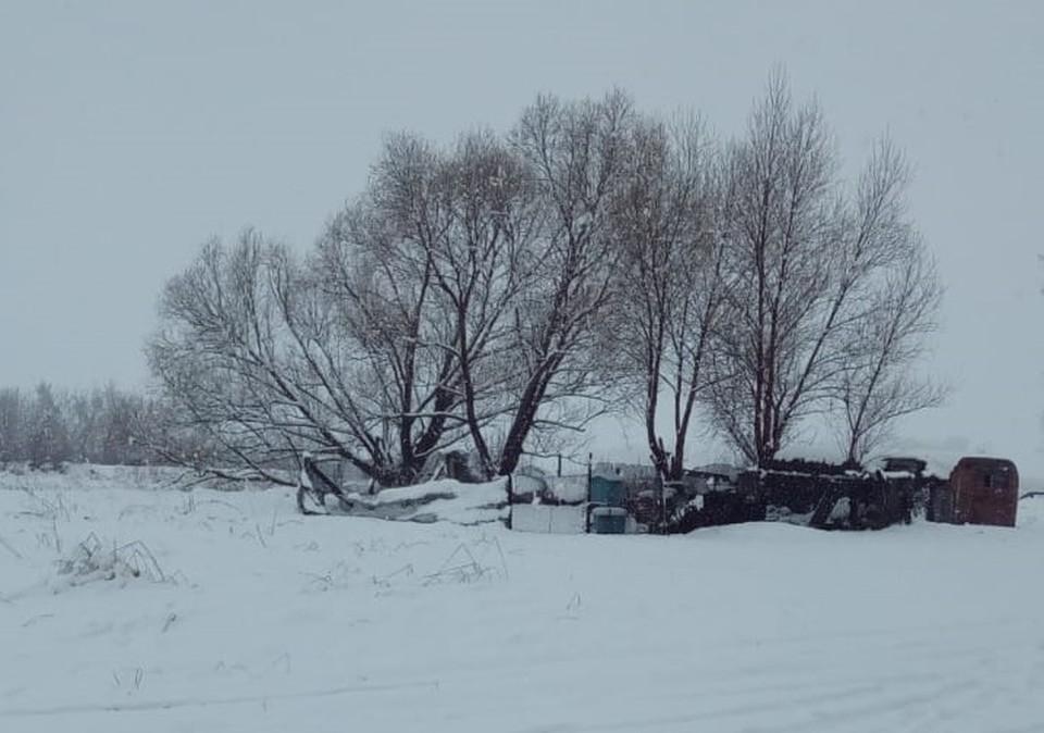 Село Топчиха засыпало снегом в конце апреля/Фото: Максим Путилин