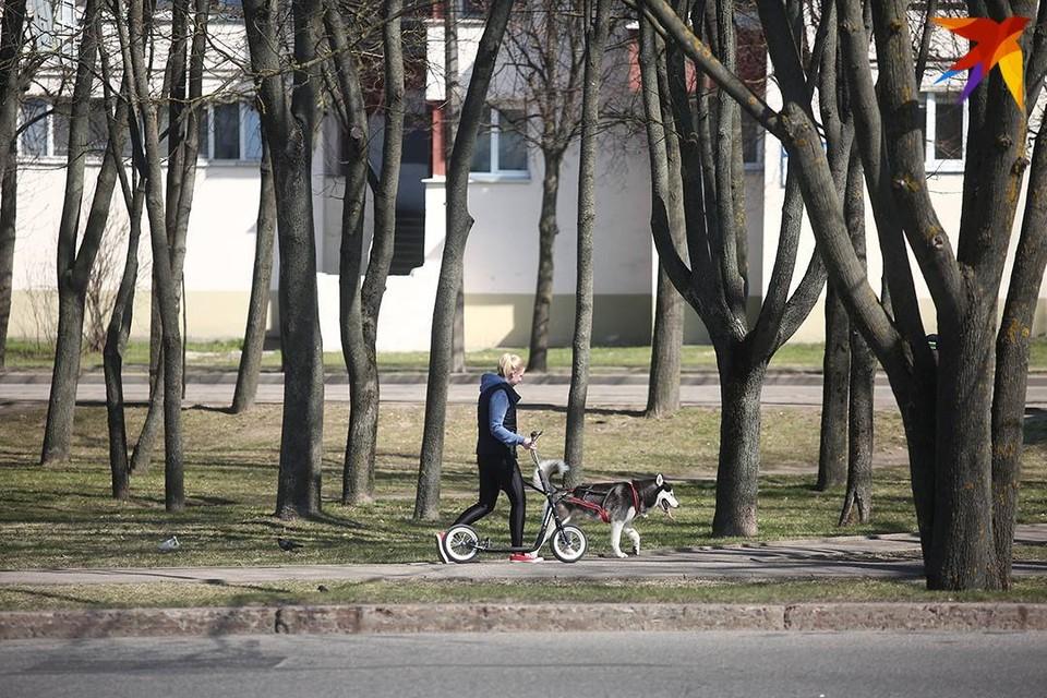 В Быхове 4-летний малыш упал с 5 этажа и отделался царапинами.