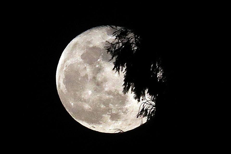 Взошла последняя в этом десятилетии Голубая луна