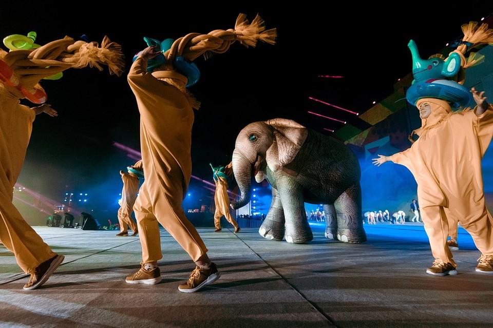 Один из символов Студенческой весны - Южный слон. Фото: пресс-центр Международной студенческой весны стран БРИКС и ШОС