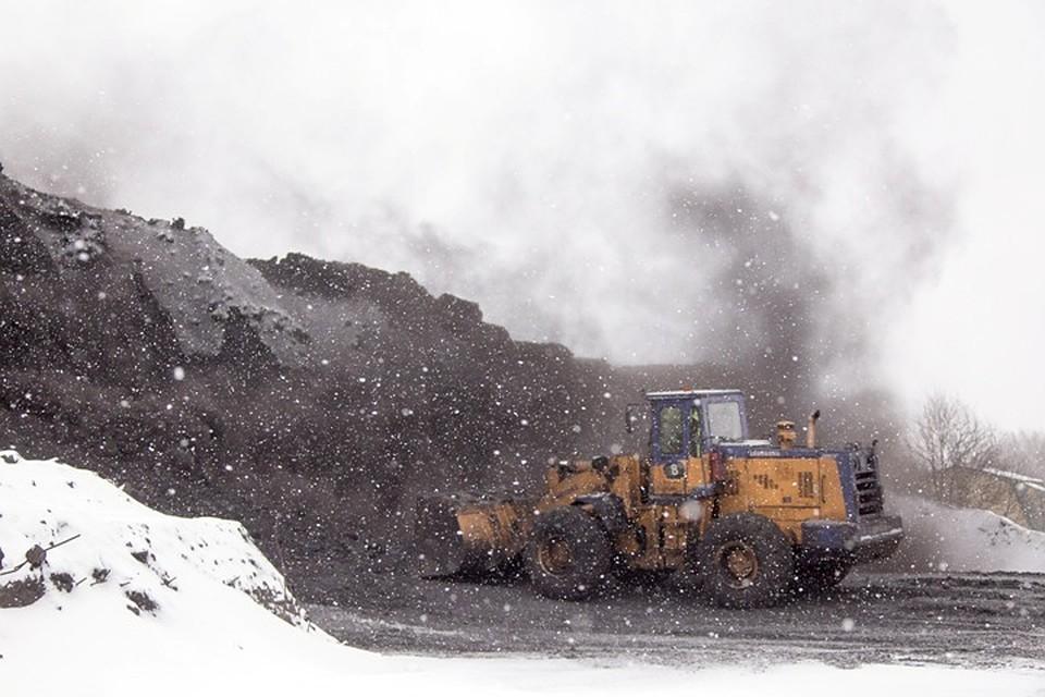 Разрезы и пункты отгрузки угля находятся рядом с жилыми домами - оттого-то и снег в городе зимой черный. ФОТО: пресс-служба АКО.