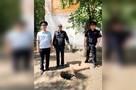 Упал с трехметровой высоты: полицейские спасли пятилетнего мальчика, который просидел в колодце 10 часов