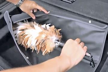 Японцы оснастили лимузин щеткой для пыли