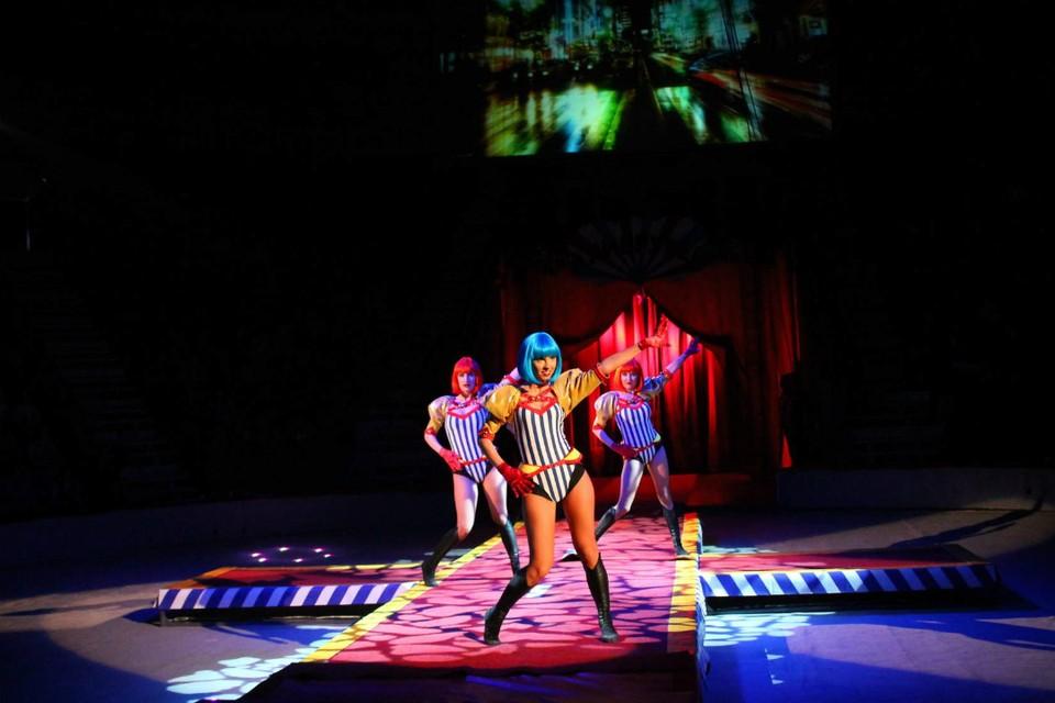 Шоу-балет станет украшением программы. Фото: vk.com/cirkzverey