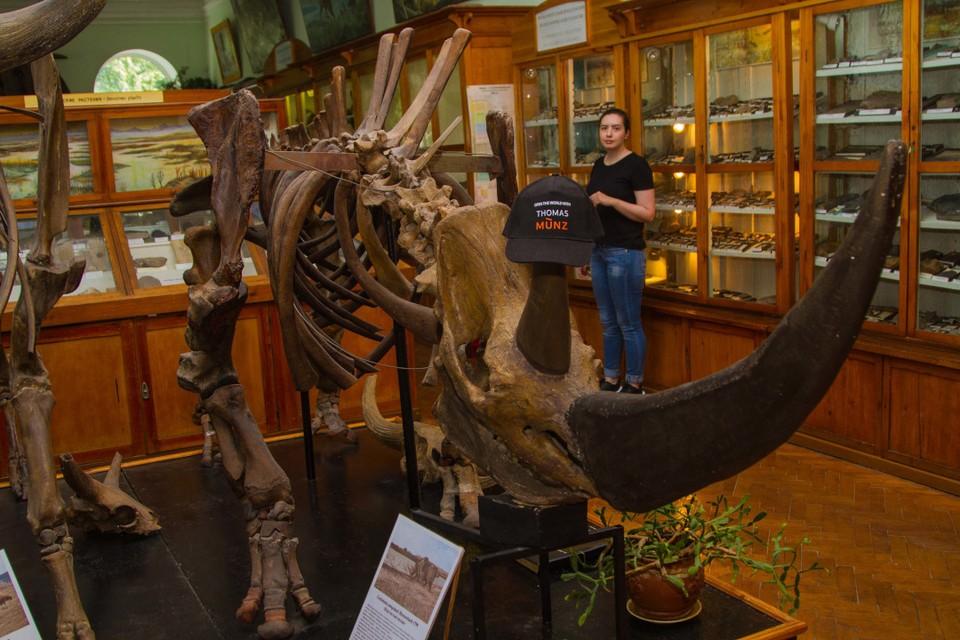 Фото из музея палеонтологии, расположенного на территории Томского государственного университета.