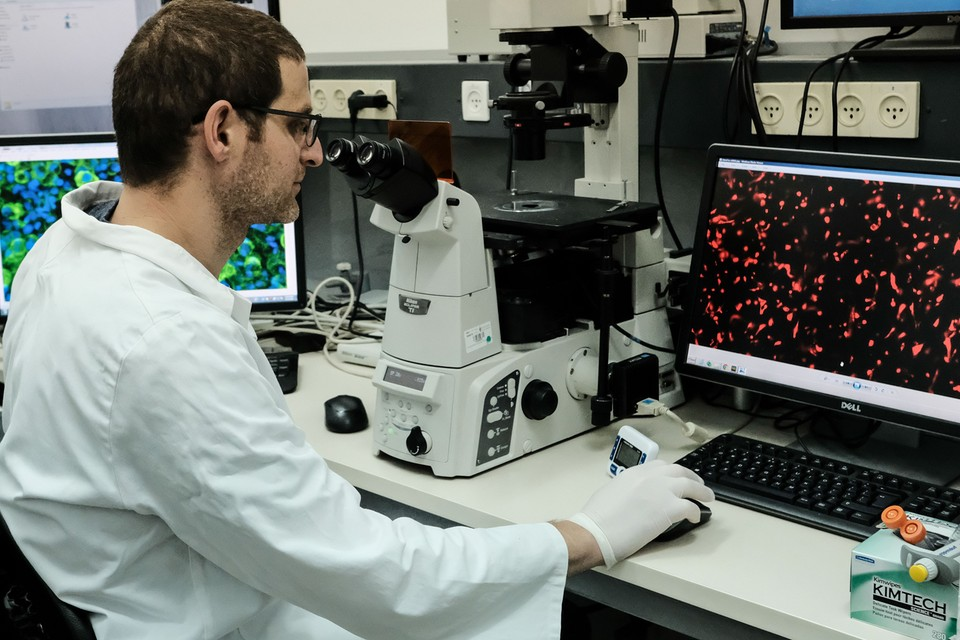 Пристальный интерес у ученых и врачей, которые изучают рассеянный склероз, сейчас вызывает микрофлора кишечника