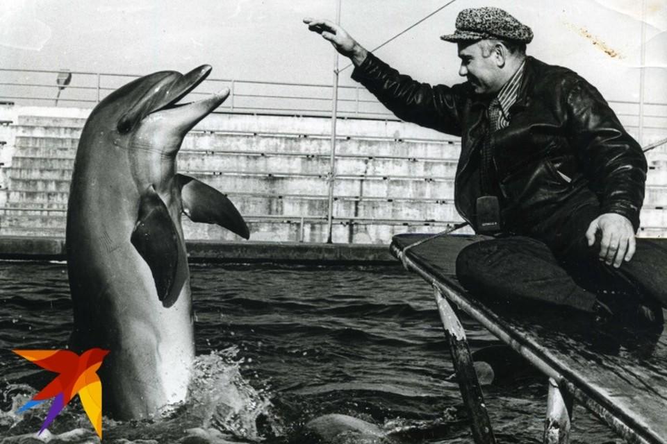 Василий Песков с дельфином.