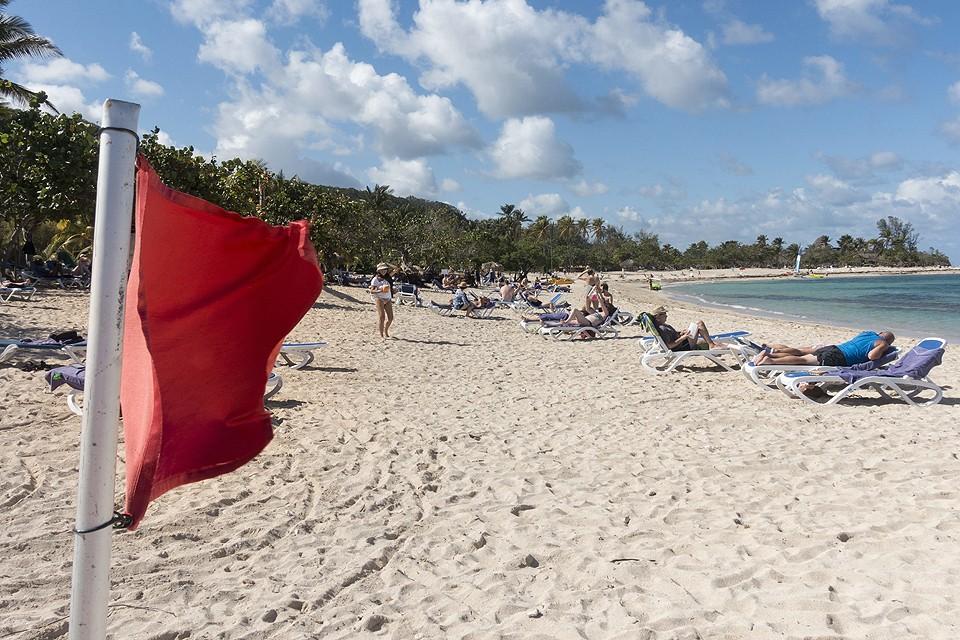 Глобальное потепление сделало свое черное дело, на морских пляжах теперь плескаться тоже опасно.