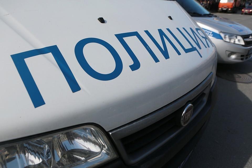 Полиция установила связь между нападениями на проститутками и трупом женщины в чемодане в Петербурге
