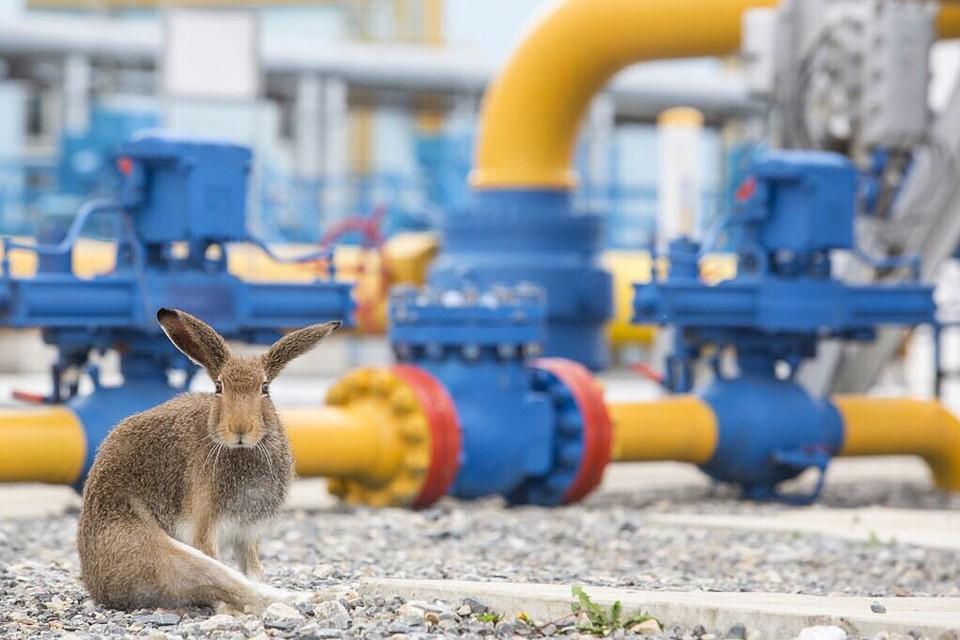 Украина готова перезаключить контракт на транзит газа из России на новых условиях