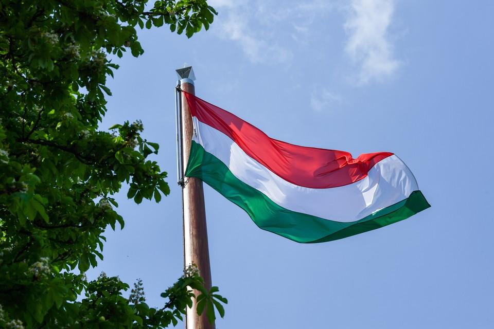 Официальный Будапешт решил проверить, кому он навыдавал свои паспорта на Украине.