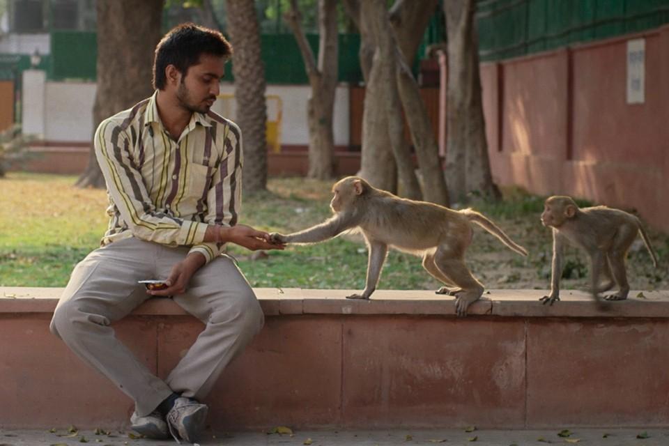 Один из лучших фильмов программы «Крадущийся тигр» - индийский под удивительным названием «Eeb Allay Ooo!» Пратека Ватса.