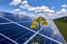 «Зеленая» энергия набирает силу