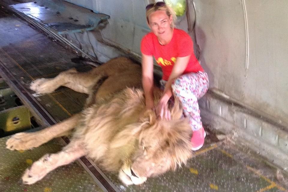 Ольга из Кирова сфотографировалась с царем зверей, а потом попала в больницу. Фото: личный архив