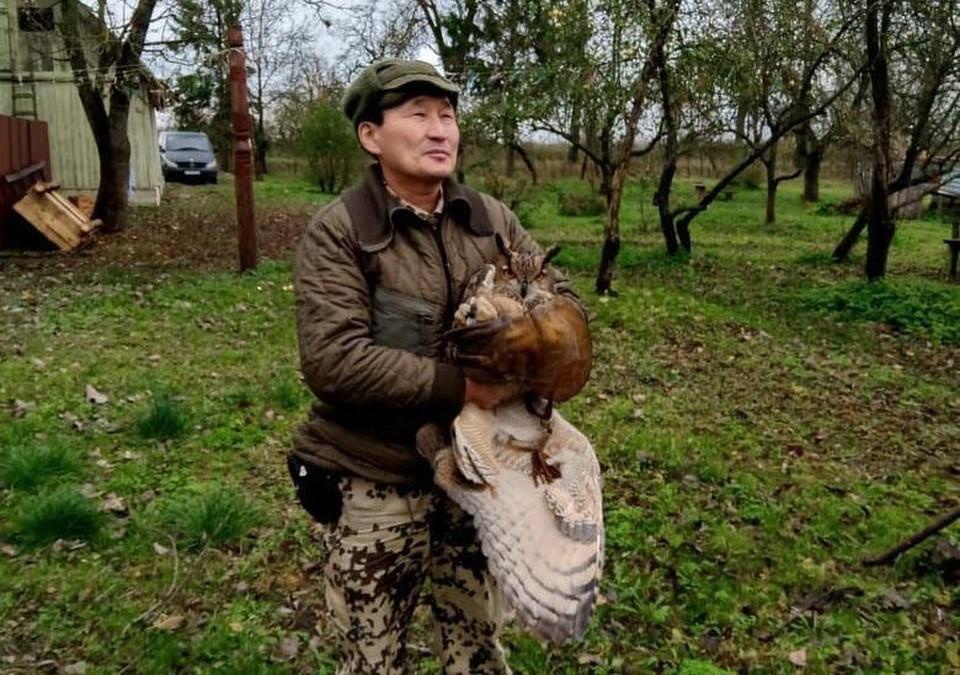 Птенец филина на руках у сокольника Алексея Лаврентьева